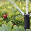 Automatyczne nawadnianie ogrodów